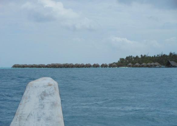 pearl beach 1